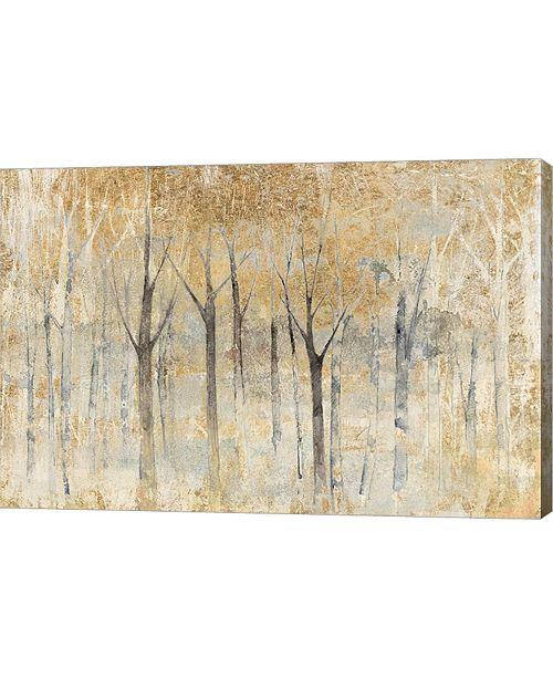 "Metaverse Seasons End Gold by Avery Tillmon Canvas Art, 30"" x 20"""