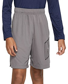 Big Boys Dri-FIT Graphic Training Shorts