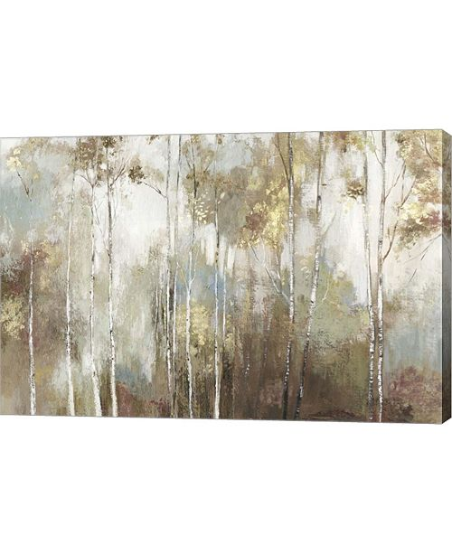 "Metaverse Fine Birch III by Allison Pearce Canvas Art, 30"" x 20"""