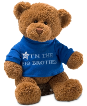Gund Baby Boys Big Brother Bear Plush Toy