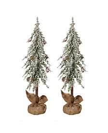Snowy Alpine Trees with Wooden Trunks and Burlap Bases - Set of 2