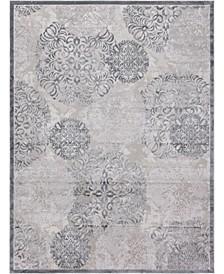 Aitana Ait3 Gray Area Rug Collection