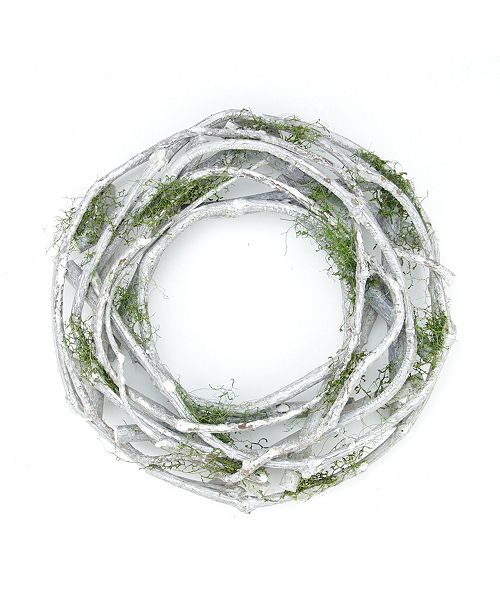 """Northlight 11"""" White Twig and Green Moss Artificial Spring Wreath"""