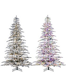 7.5-Foot High Flocked Pre-Lit Mountain Pine with Instant Glow Power Pole Feature