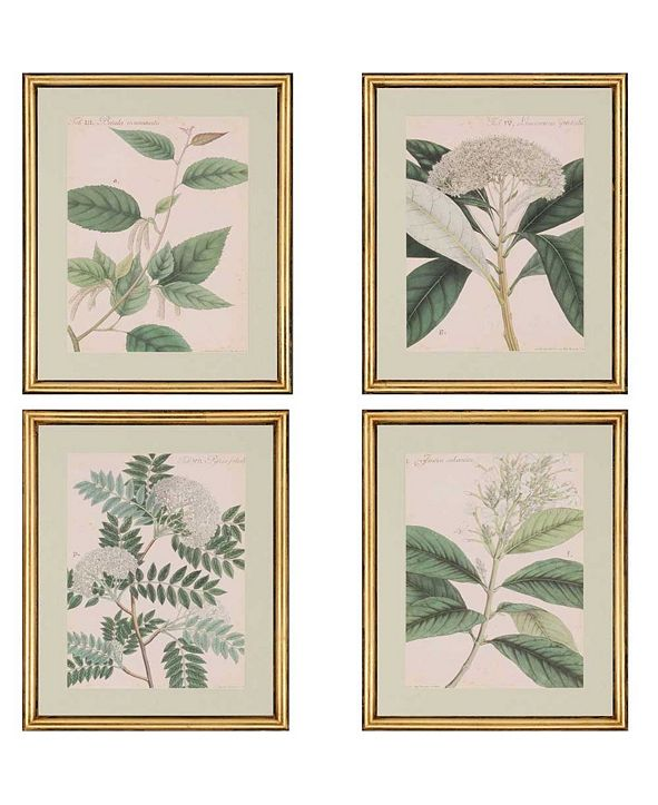 "Paragon Botanicals Framed Wall Art Set of 4, 22"" x 18"""