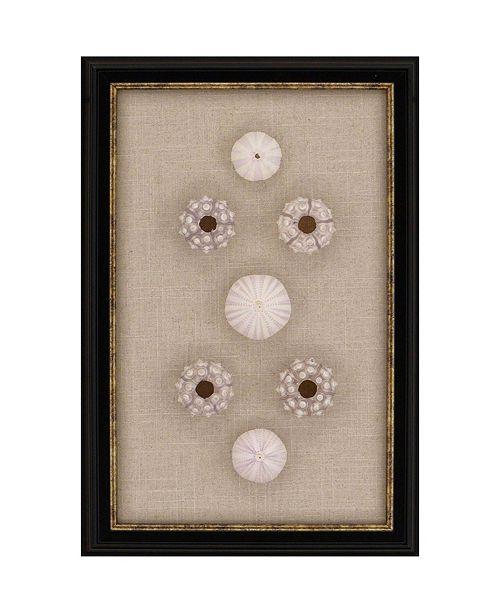 """Paragon Sea Urchin Sputnik Framed Wall Art, 18"""" x 12"""""""