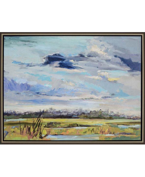 "Paragon Marsh Skies Framed Wall Art, 39"" x 51"""