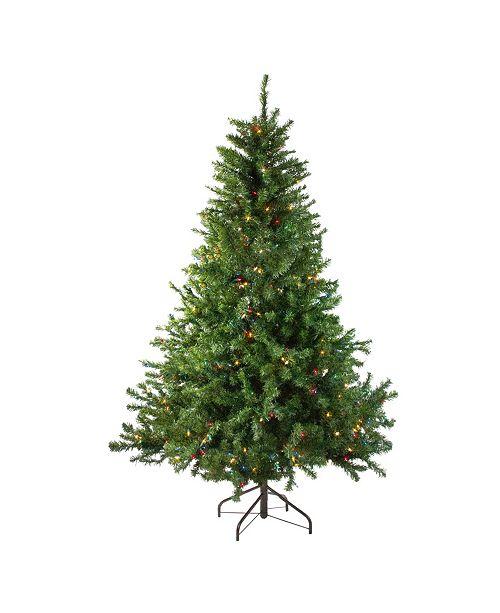 Northlight 5' Pre-Lit Canadian Pine Artificial Christmas Tree - Multi Lights