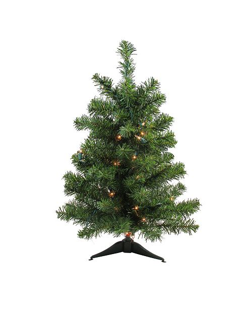 Northlight 2' Pre-Lit Canadian Pine Artificial Christmas Tree - Clear Lights
