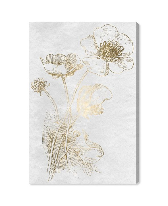 "Oliver Gal Poppy Sketch Gold Canvas Art, 24"" x 36"""