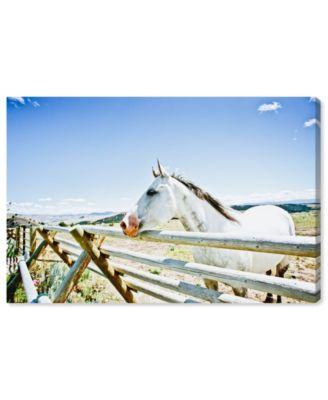 Cassandra Eldridge - Gracie The Horse Canvas Art, 36