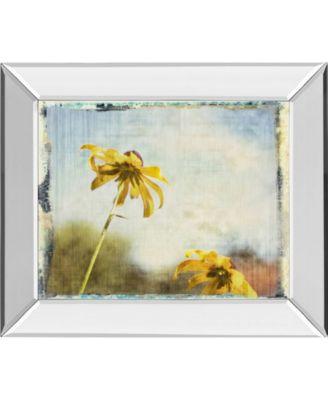 "Blackeyed Susan's II by Meghan Mcsweeney Mirror Framed Print Wall Art, 22"" x 26"""