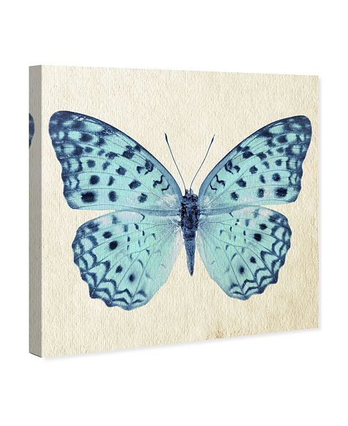 """Oliver Gal Blue Butterfly Canvas Art, 43"""" x 43"""""""