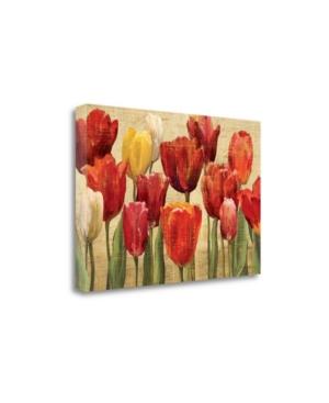 Tangletown Fine Art Tulip fantasy On Cream by Marilyn Hageman Giclee Print on Gallery Wrap Canvas, 3
