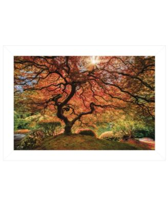 """First Colors of Fall I by Moises Levy, Ready to hang Framed Print, White Frame, 21"""" x 15"""""""