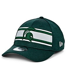 Michigan State Spartans Team Color Stripe 39THIRTY Cap