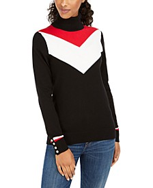 V-Stripe Turtleneck Sweater