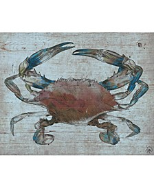 "Rusty Auburn Crab 20"" x 16"" Canvas Wall Art Print"