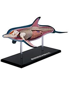4D Vision Dolphin Anatomy Model