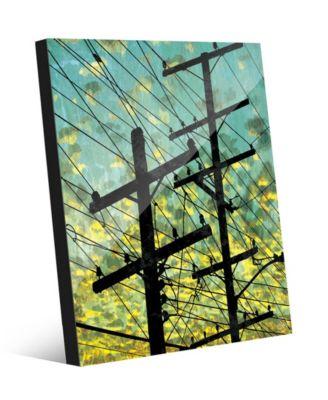 Electric Link - Summer Sky 24