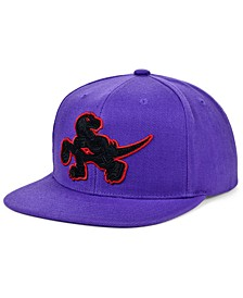 Toronto Raptors Full Court Pop Snapback Cap
