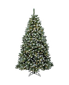 7.5 ft. Finley Pine Tree with Clear Lights