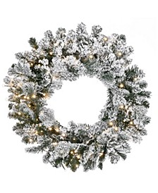 24in. Snowy Sheffield Spruce Wreath with Battery Operated LED Lights
