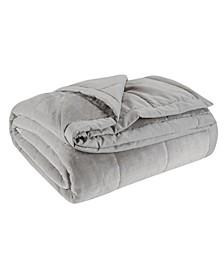 Coleman Reversible Plush Down Alternative Blanket, Full/Queen