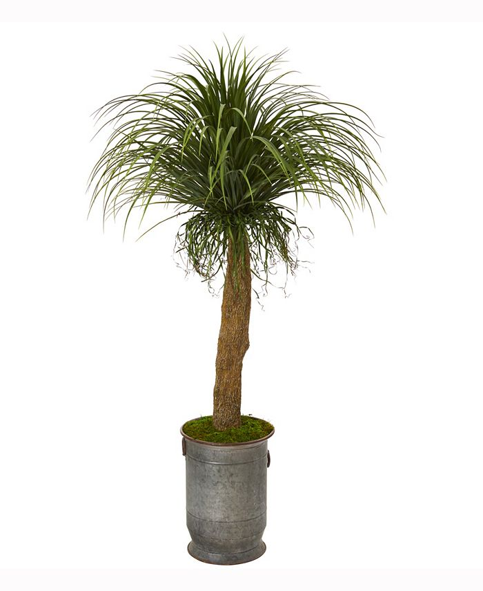Nearly Natural - 64in. Pony Tail Palm Artificial Plant in Copper Trimmed Metal Planter