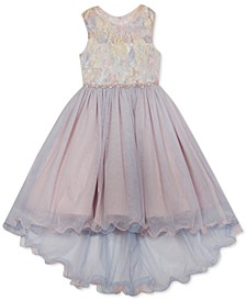 Toddler Girls Embroidered Illusion Mesh Dress