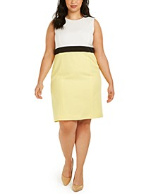 Plus Size Colorblocked Dress