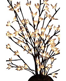 Illuminated Forsythia Branches