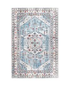 Vivid Silk Pandora Persian Distessed Area Rug