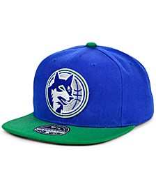 Minnesota Timberwolves Wool 2 Tone Fitted Cap