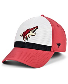 Arizona Coyotes Breakaway Flex Cap