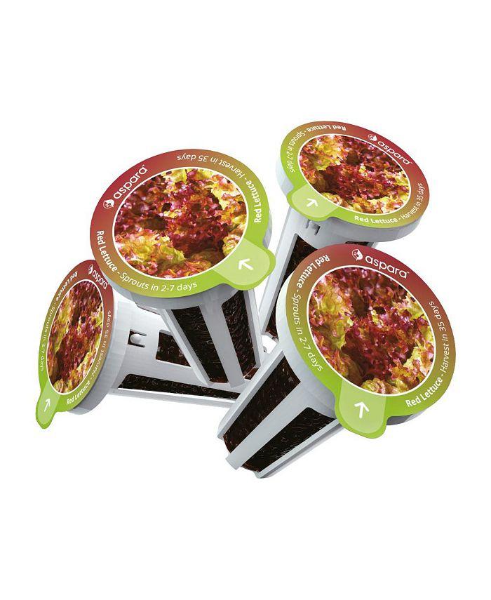 Aspara - KLR0001 8 capsule seed kit - Red Lettuce