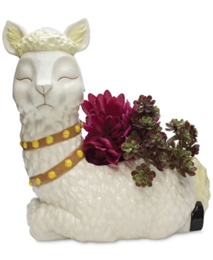 Place your prized plants inside a planter emulating the gentle beauty of these wooly creatures