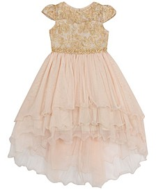 Toddler Girl Embroidered And Tiered Mesh Dress