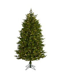 Hartford Fir Artificial Christmas Tree with 250 Warm Multifunction LED Lights with Instant Connect Technology and 711 Bendable Branches