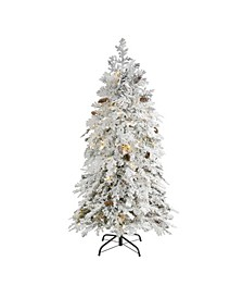 Flocked Montana Down Swept Spruce Artificial Christmas Tree with 100 Clear LED Lights