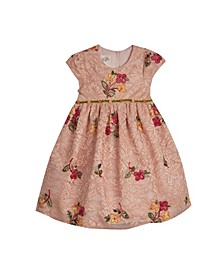 Toddler Girls Floral Embroidered Lace Dress