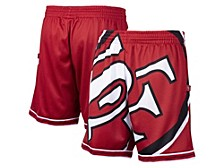 Men's San Francisco 49ers Big Face Shorts