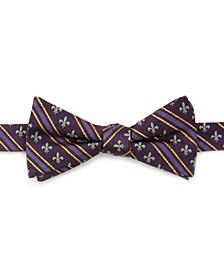 Men's Mardi Gras Stripe Bow Tie
