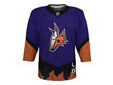 Arizona Coyotes Youth Special Edition Premier Jersey
