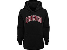 Chicago Bulls Men's Statement PO Hoodie