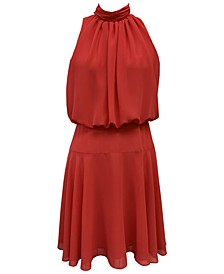 Chiffon Blouson Fit & Flare Dress