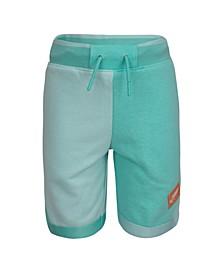 Little Boys Jumpman Shorts