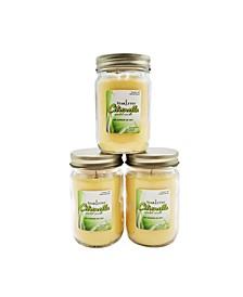 Lumabase Set of 3, 9Oz Citronella Candles in Mason Jars