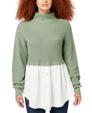 Ellie Mixed Media Turtleneck Sweater