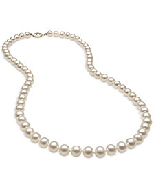 Cultured Freshwater Pearl (6mm) Strand in 14k Gold